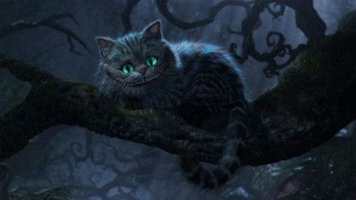 lo stregatto / the cheshire cat - alice in wonderland picture on VisualizeUs