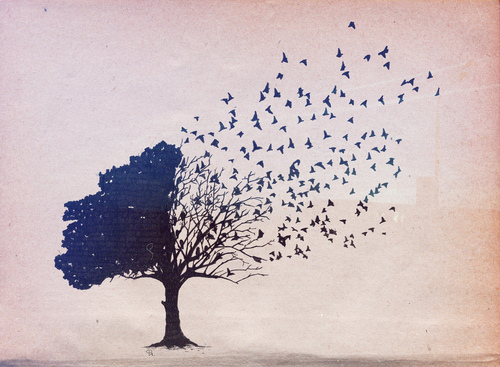 Tree-birds-drawing-corvax-favim.com-474177_large