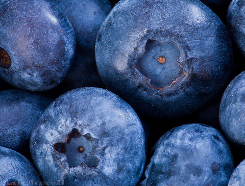 Blueberry, Macro, Fruit, Nikon - inspiring picture on Favim.com