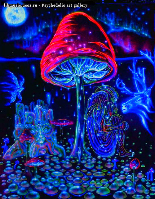 Psychedelic-mushroom-trip_large