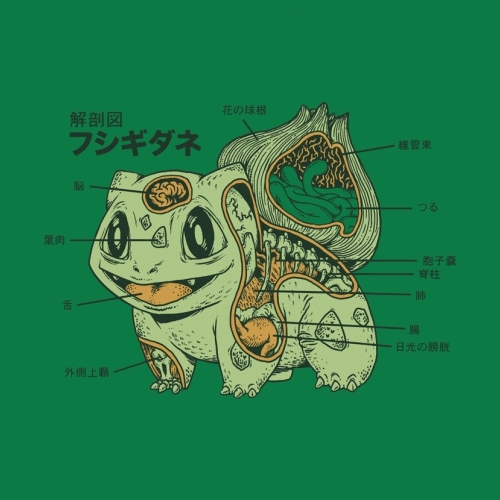 Bulbasaur-anatomy_large
