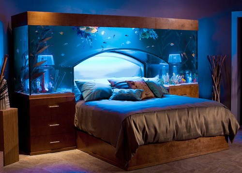 Fish-tank-headboard_large