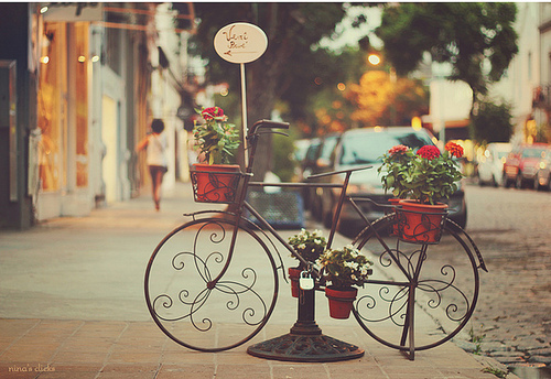 Bicycle-flowers-photography-romance-favim.com-493910_large