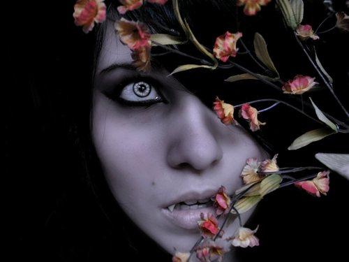 Tajne-a-vampire-upíri-30398356-1600-1200_large