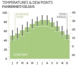 temperature and dew point
