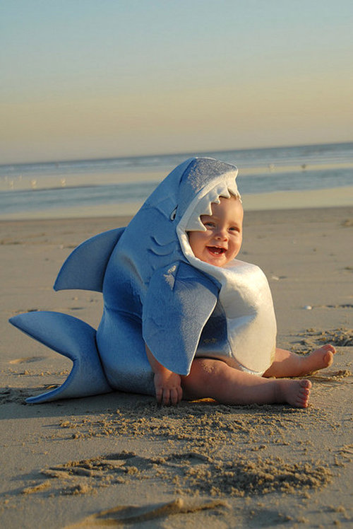 Shark-costume-baby-on-the-beach_large