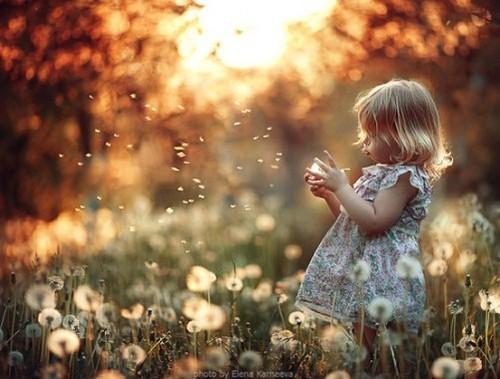 One-word-broody-girl-wishing-on-dandelions-501x380_large