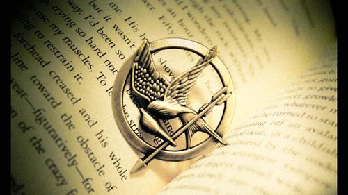 Hunger Games «Et puisse le sort vous être favorable. » Hunger-Games-Mockingjay-Pin_large