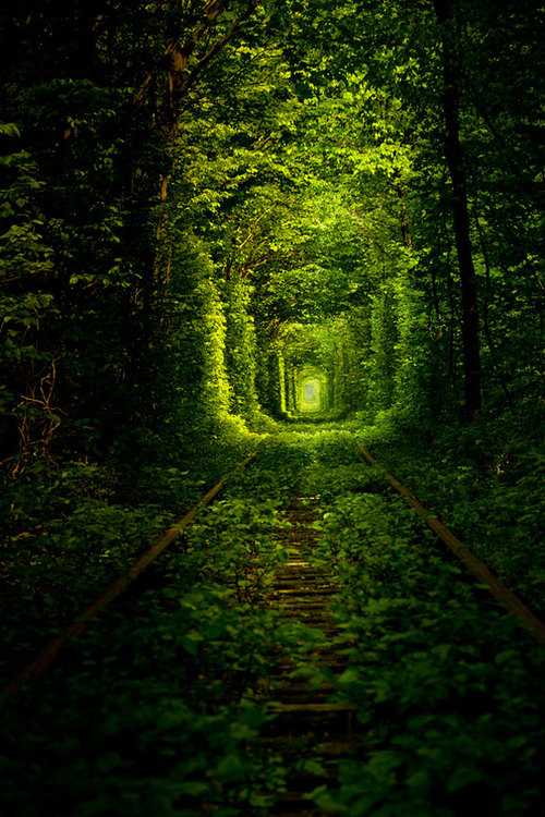 Tunnel-of-love-ukraine-6_large