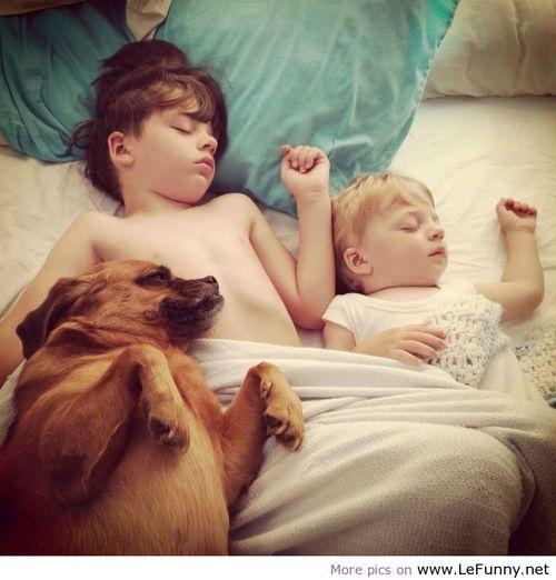 Dormir buddies_large-
