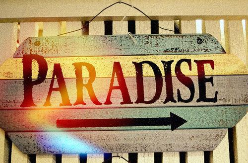 Paradise-summer-sun-sunshine-favim.com-519034_large