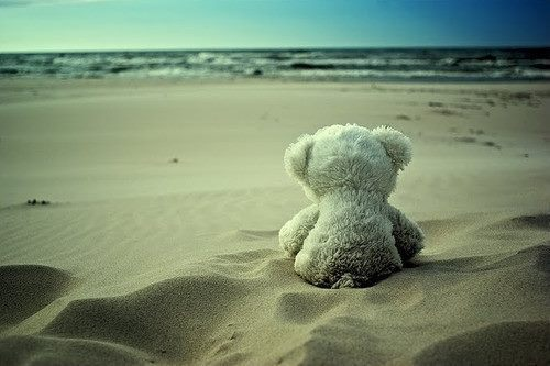 Beach-sand-teddy-water-favim.com-519395_large