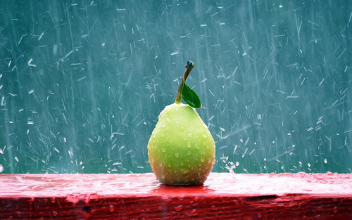 Pear_in_the_rain_hd_widescreen_wallpapers_1920x1200_large