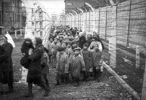 essays on survival in auschwitz Survival in auschwitz - auschwitz essay example in primo levi's autobiography, survival in auschwitz, he identifies some.