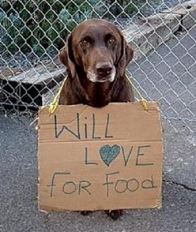 Will_20love_20for_20food_20(2)_large