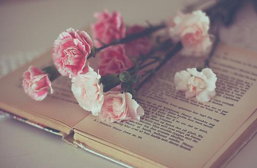 Kitap Resimleri En G�zel Kitap Kapaklar�