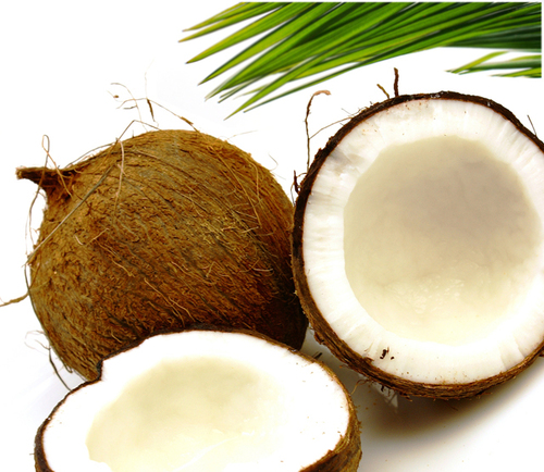 Coconuts1_large