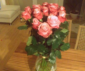 18 rosess