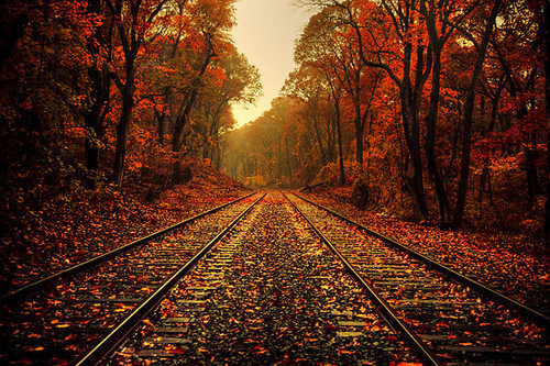 Autumn_forest_photography_railroad_railroad_tracks_red-3b0cf3c5772aa9c0f284d2284f3d2d3f_h_large