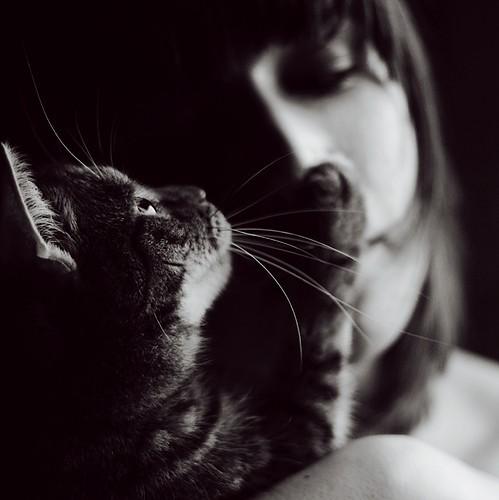 blog animal black   white kitten photography kitty e1bc86879b279261461de1ef564f7efb h large loves me by ~sophie0305 on deviantart picture on VisualizeUs