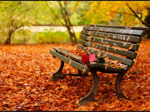 Romantic-autumn-daydreaming-18932448-1024-768_large