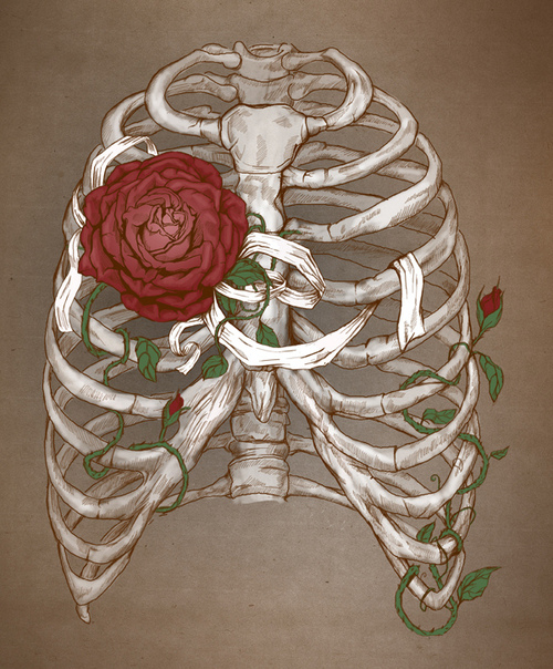 Rib Cage And Flowers Drawing Group of Art Bones Flowers