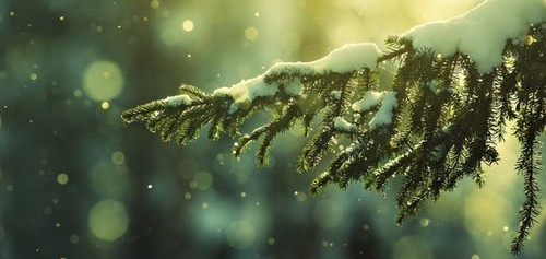 Christmas_wallpapers_christmas_snow_025784_-144189_630x298_large