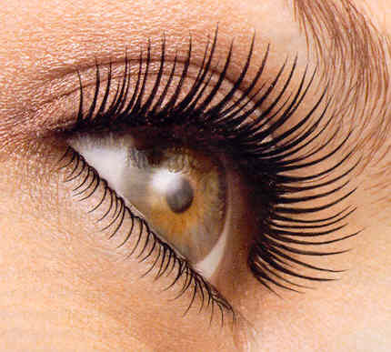 Curled-eyelashes_large