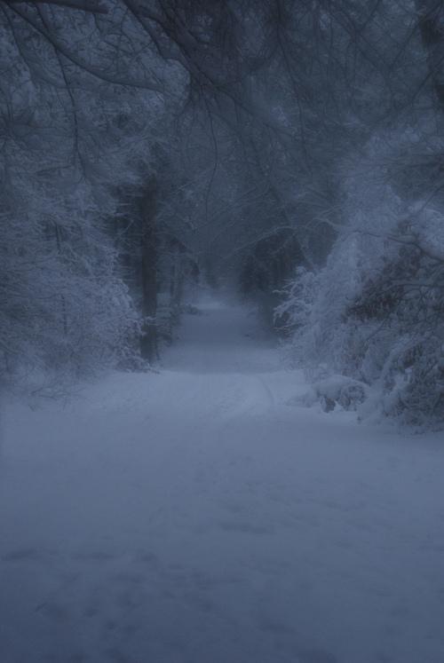 winter | Tumblr