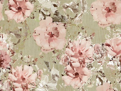 A_victorian_shabby_rose_highres_large