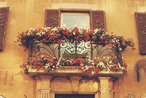 Casa_decora_c3_a7_c3_a3o_balcony_flowers_window-abcd1d7abf7a0a733a0cbaf143b975a0_h_large