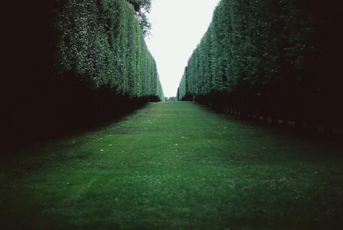 Labirinto - Página 2 Tumblr_mfjenut3CX1rhmxy6o1_500_large