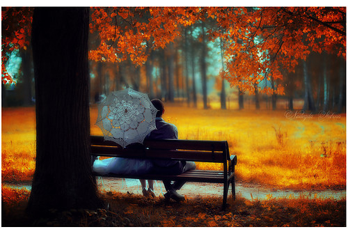 Romantic,bench,couple,inspiration,photography,art,illustration,love-642129fe02ecf2a748591499a7f4c507_h_large