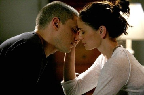 Sarah-wayne-callies-as-dr-sara-tancredi-wentworth-miller-as-michael-scofield-person-break-lostpic-_large