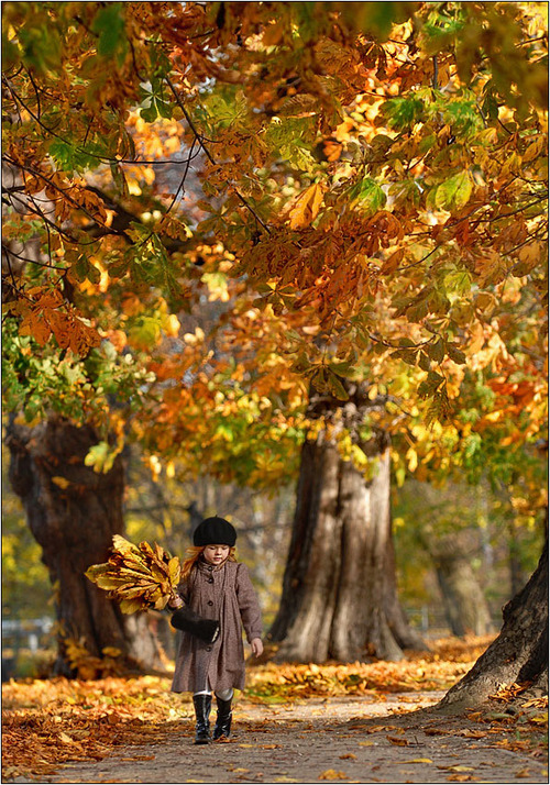 Jesen - Page 6 Autumn_in_park_by_fotouczniak_large