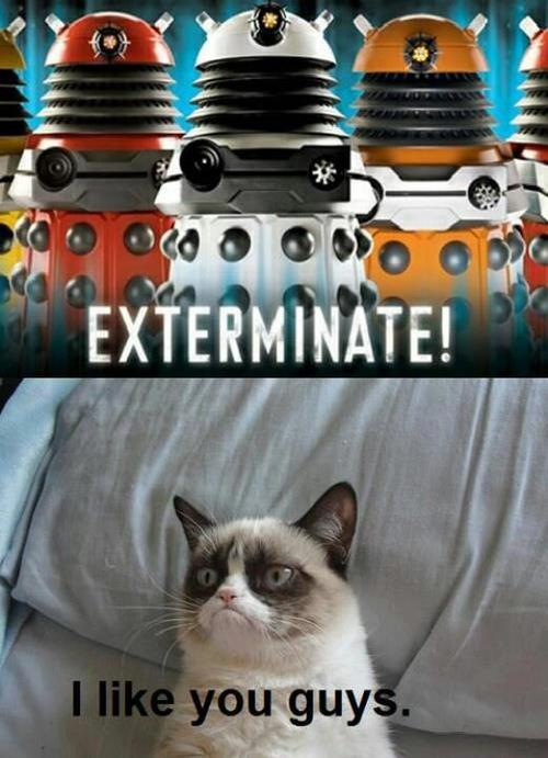 GRUMP CAT DALEKS