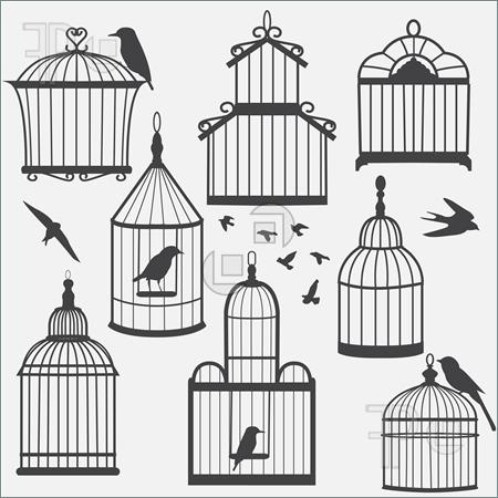 Bird Cages Drawings Group of Bird Cages