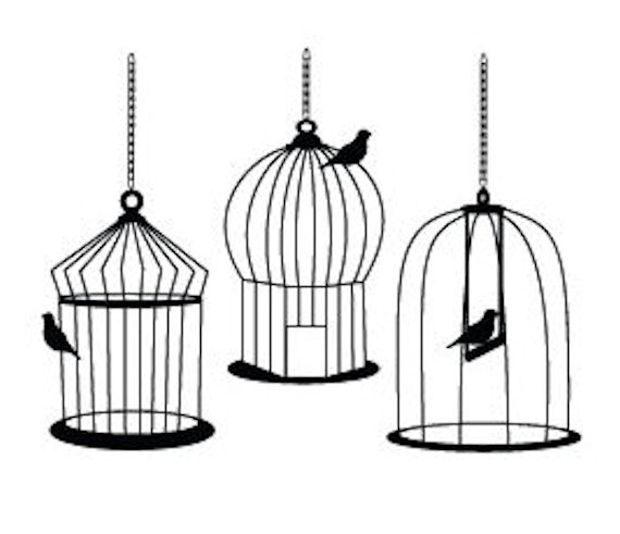 Bird Cages Drawings Group of Bird Cage Drawings
