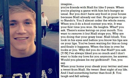 Niall Horan Imagines Fight