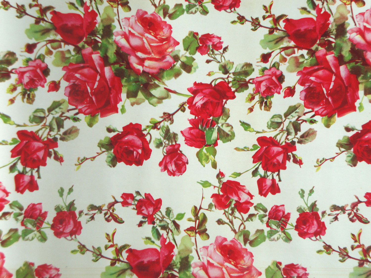 knumathise: Red Roses Tumblr Vintage Images