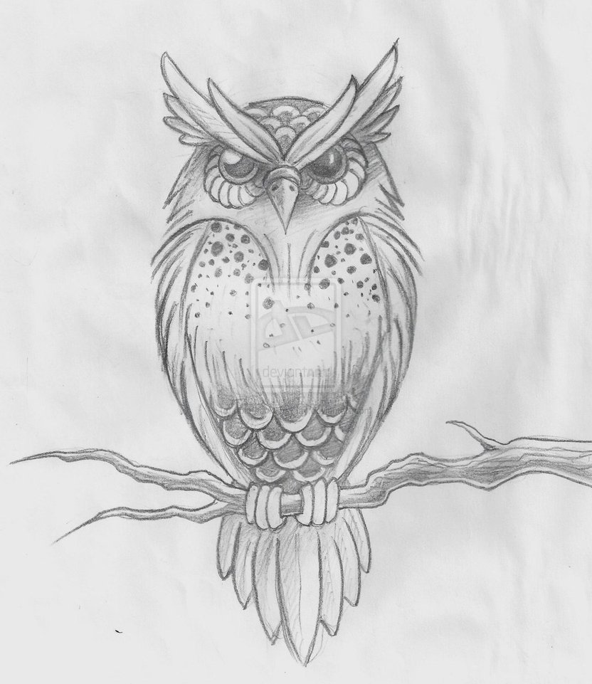 Owl Sketch By hold back the day On DeviantART We Heart It Tattoo