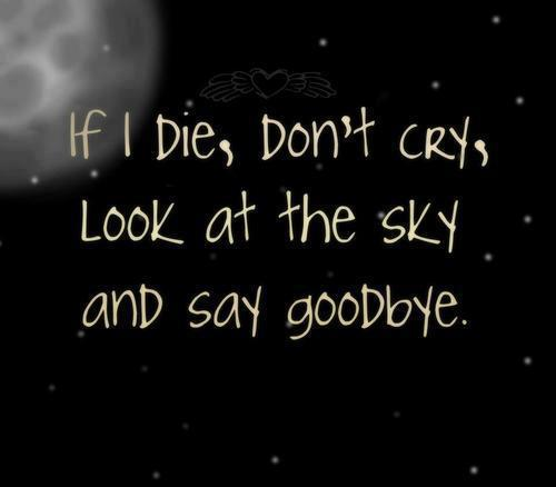 If I Die Young Quotes Quotesgram