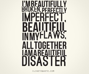 beautiful disaster