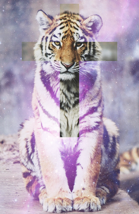 Tumblr galaxy tiger