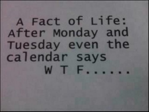 Photo pourrie d'un texte A Fact of Life : After Monday and Tuesday even the calendar says W T F...... Une Ralit de la Vie : Aprs Lundi et Mardi mme le calendrier dit W T F......