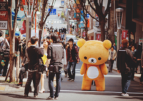 Japan_isolation_reality_surreal_teddy_cute-3317e0af30fe1fd72c2ae123d944826c_h_large