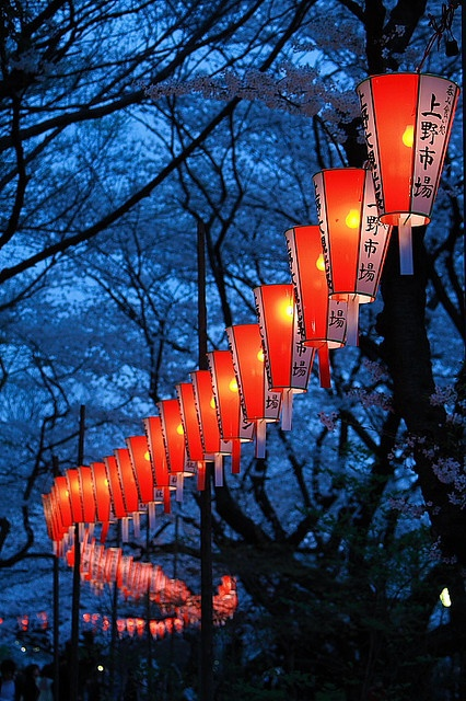 Colorful! / Lantern Festival, Sakura, Japan photo via getout