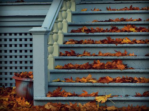 Beautiful-photography-random-tumblr-favim.com-651578_large