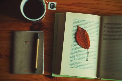 ცხოვრებისეული ისტორიები, რომლებიც დაგაფიქრებენ [2]