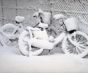 photography white cycle